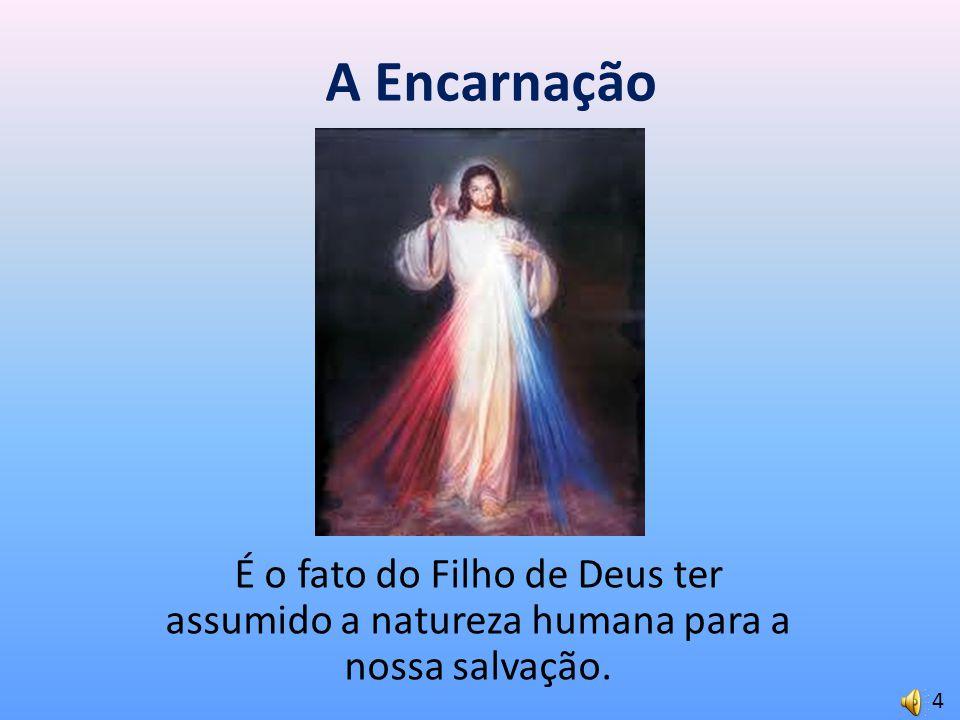 A Encarnação É o fato do Filho de Deus ter assumido a natureza humana para a nossa salvação. 4