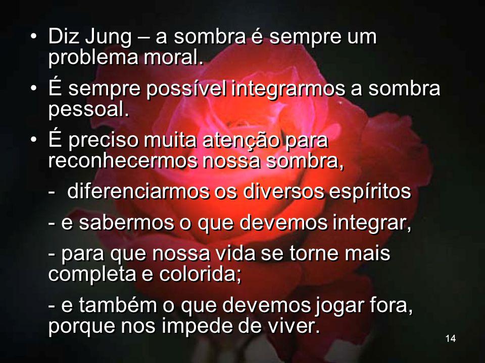 14 Diz Jung – a sombra é sempre um problema moral. É sempre possível integrarmos a sombra pessoal. É preciso muita atenção para reconhecermos nossa so