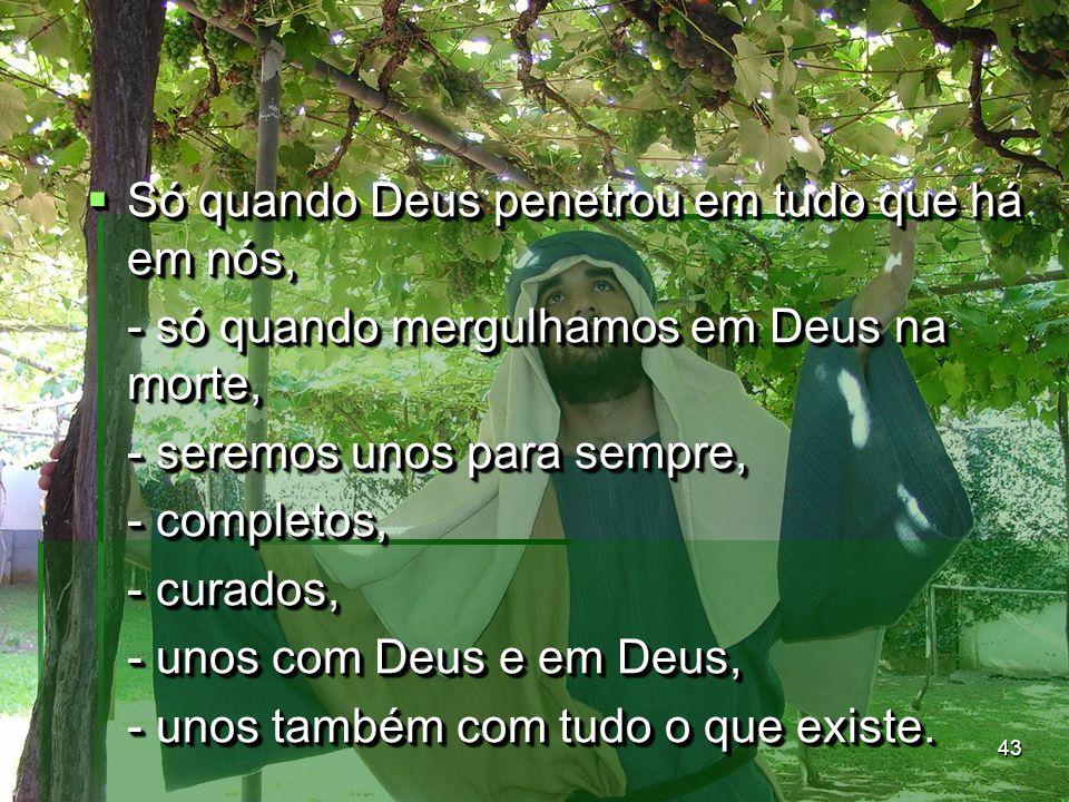 43  Só quando Deus penetrou em tudo que há em nós, - só quando mergulhamos em Deus na morte, - seremos unos para sempre, - completos, - curados, - un