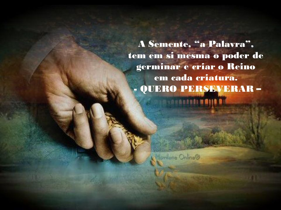Porque queremos: Ser produto da semente. Ser folha seca, desprendida do Ego, nas mãos de Deus. Ser levada aos braços do Pai. Ser iluminada pela luz do