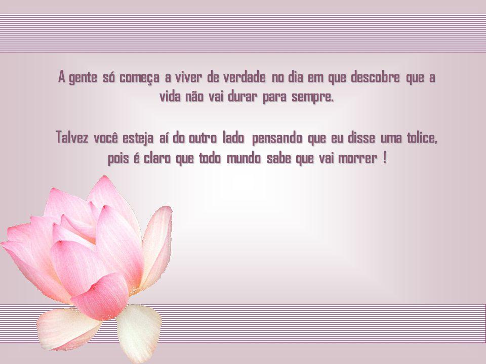 - Geraldo Eustáquio de Sousa -