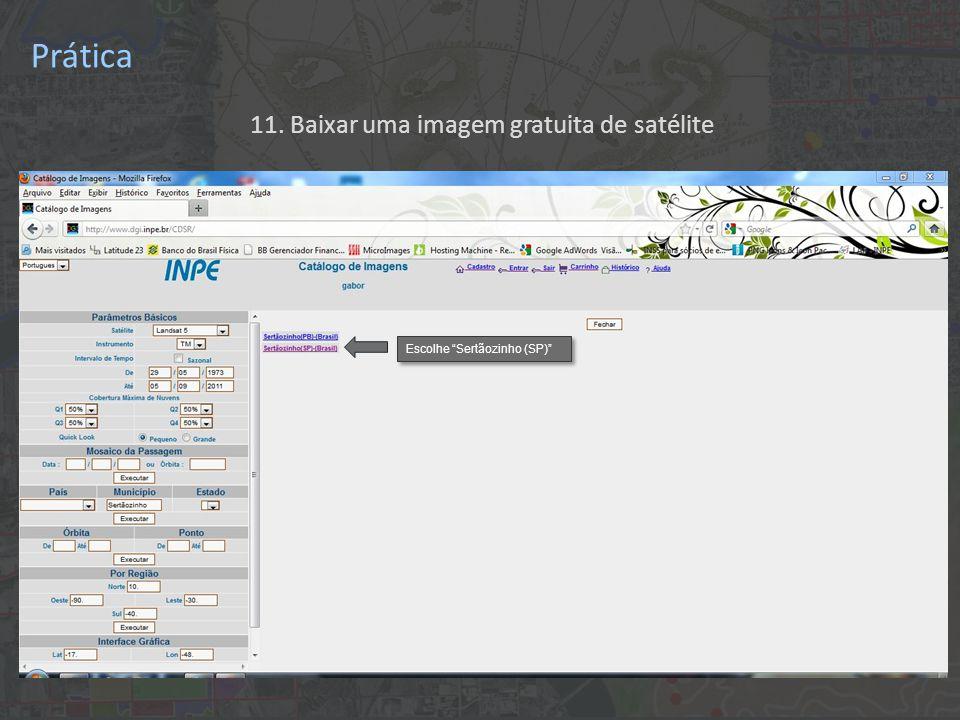 """11. Baixar uma imagem gratuita de satélite Escolhe """"Sertãozinho (SP)"""" Prática"""