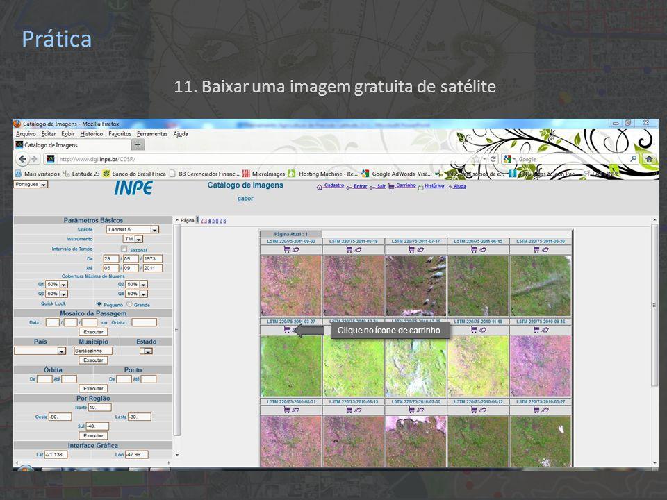 11. Baixar uma imagem gratuita de satélite Clique no ícone de carrinho Prática