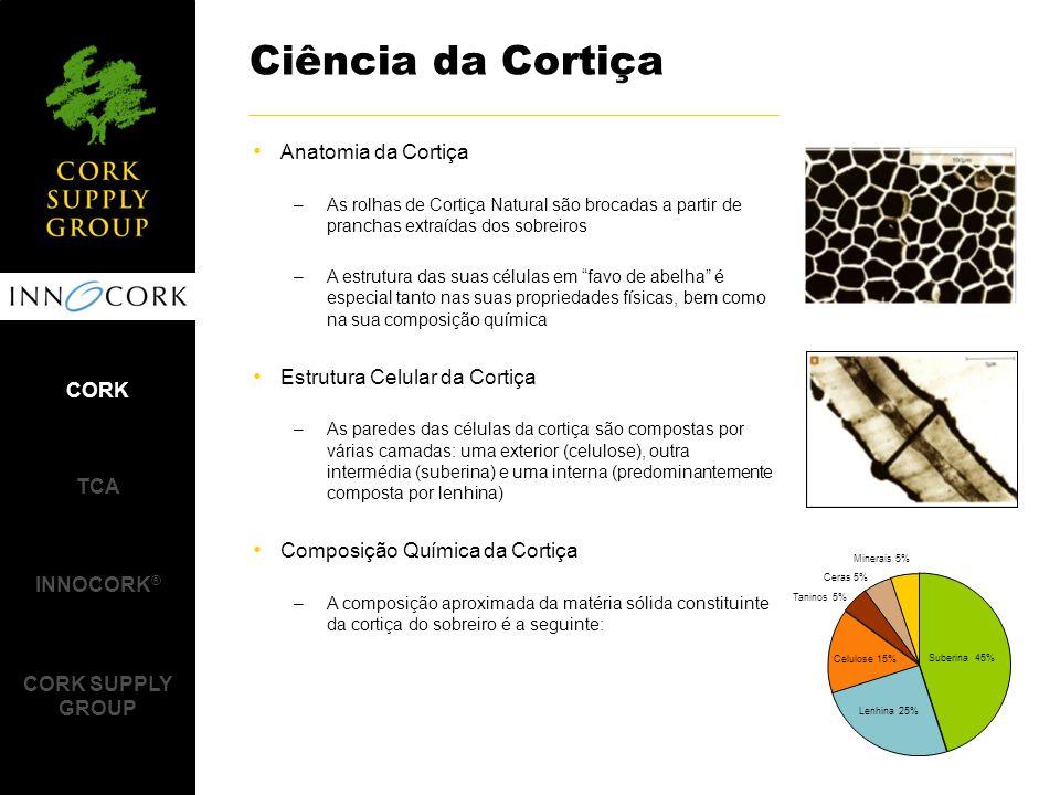 Anatomia da Cortiça –As rolhas de Cortiça Natural são brocadas a partir de pranchas extraídas dos sobreiros –A estrutura das suas células em favo de abelha é especial tanto nas suas propriedades físicas, bem como na sua composição química Estrutura Celular da Cortiça –As paredes das células da cortiça são compostas por várias camadas: uma exterior (celulose), outra intermédia (suberina) e uma interna (predominantemente composta por lenhina) Composição Química da Cortiça –A composição aproximada da matéria sólida constituinte da cortiça do sobreiro é a seguinte: Ciência da Cortiça Celulose 15% Taninos 5% Ceras 5% Minerais 5% Suberina 45% Lenhina 25% CORK TCA INNOCORK ® CORK SUPPLY GROUP