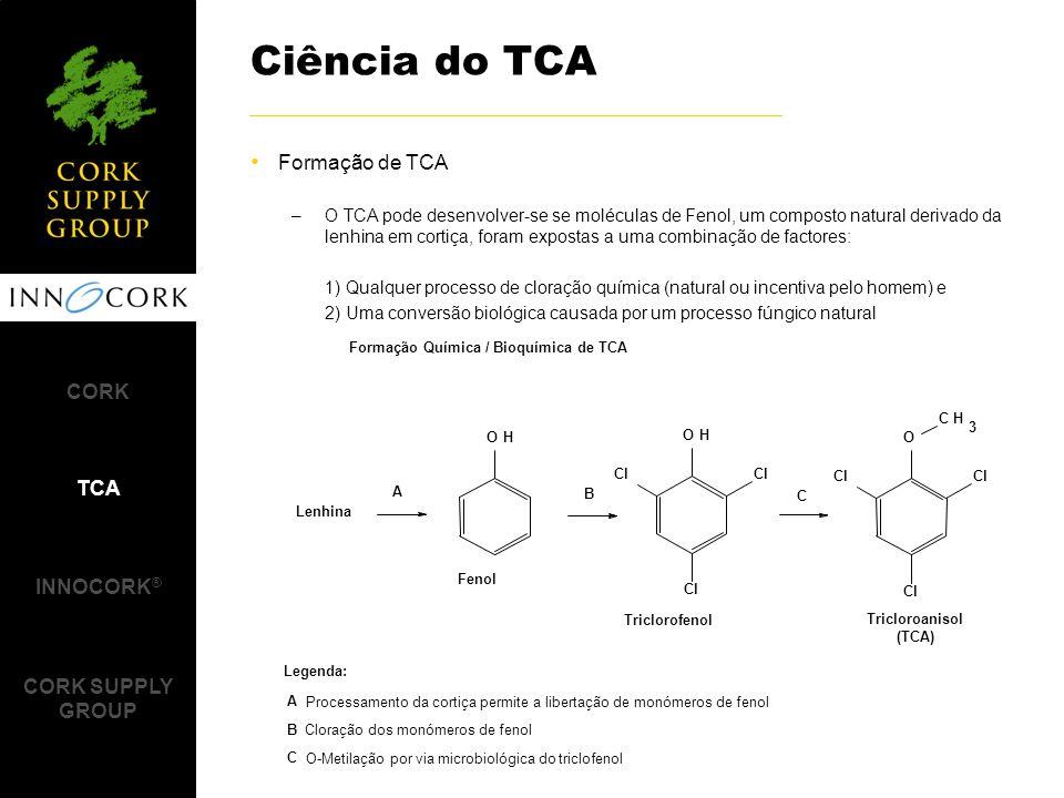 Formação de TCA –O TCA pode desenvolver-se se moléculas de Fenol, um composto natural derivado da lenhina em cortiça, foram expostas a uma combinação de factores: 1) Qualquer processo de cloração química (natural ou incentiva pelo homem) e 2) Uma conversão biológica causada por um processo fúngico natural Ciência do TCA CORK TCA INNOCORK ® CORK SUPPLY GROUP OH Lenhina Cl OH CH 3 O A B C Fenol Triclorofenol Tricloroanisol (TCA) Legenda: A Processamento da cortiça permite a libertação de monómeros de fenol B Cloração dos monómeros de fenol C O-Metilação por via microbiológica do triclofenol Formação Química / Bioquímica de TCA