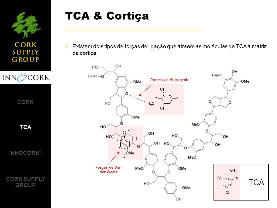 Existem dois tipos de forças de ligação que atraem as moléculas de TCA à matriz da cortiça: TCA & Cortiça Pontes de Hidrogénio Forças de Van der Waals CORK TCA INNOCORK ® CORK SUPPLY GROUP = TCA