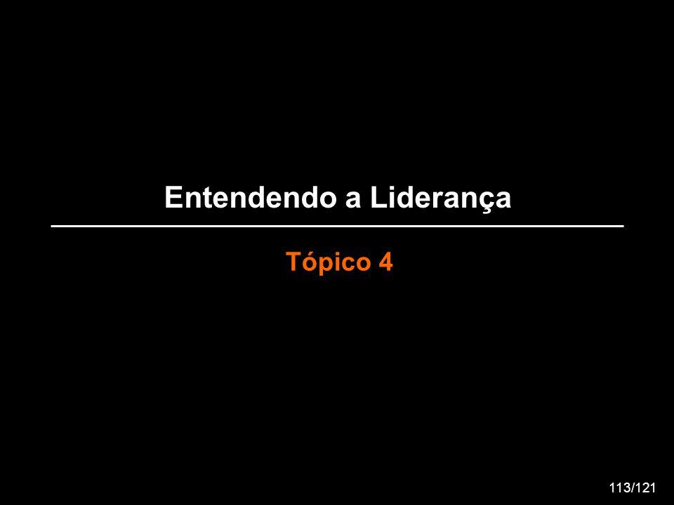 Entendendo a Liderança Tópico 4 113/121