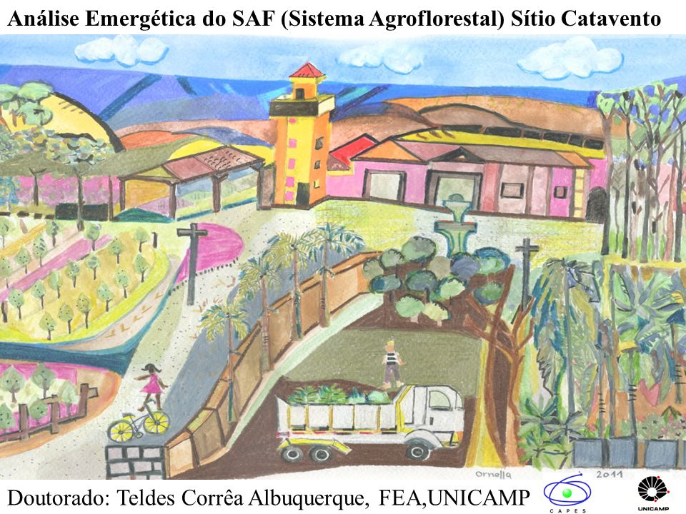 Análise Emergética do SAF (Sistema Agroflorestal) Sítio Catavento Doutorado: Teldes Corrêa Albuquerque, FEA,UNICAMP