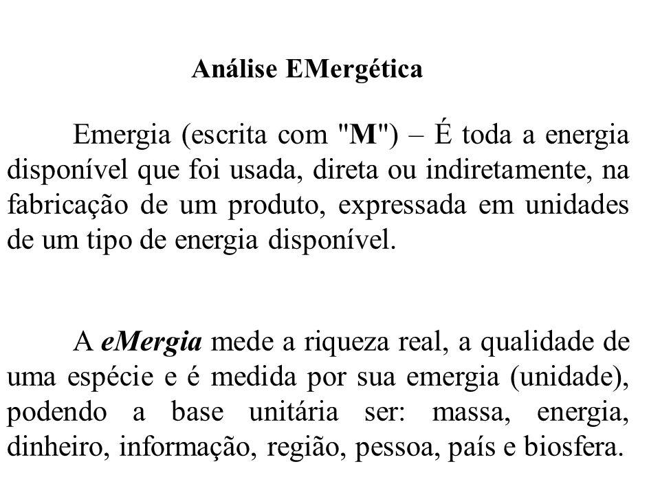 Análise EMergética Emergia (escrita com