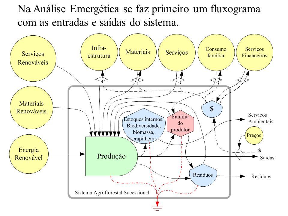 Na Análise Emergética se faz primeiro um fluxograma com as entradas e saídas do sistema.