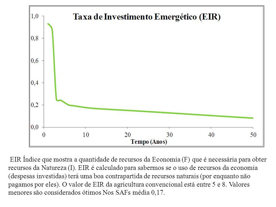 EIR Índice que mostra a quantidade de recursos da Economia (F) que é necessária para obter recursos da Natureza (I). EIR é calculado para sabermos se