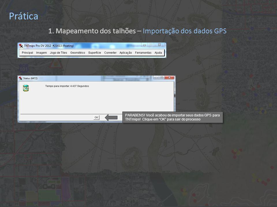 """Prática PARABENS! Você acabou de importar seus dados GPS para TNTmips! Clique em """"OK"""" para sair do processo 1. Mapeamento dos talhões – Importação dos"""