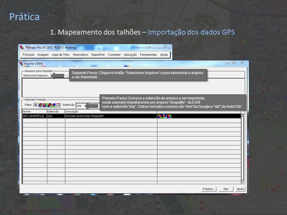 Prática Primeiro Passo: Escreva a extensão do arquivo a ser importado; neste exemplo importaremos um arquivo shapefile da ESRI com a extensão shp .