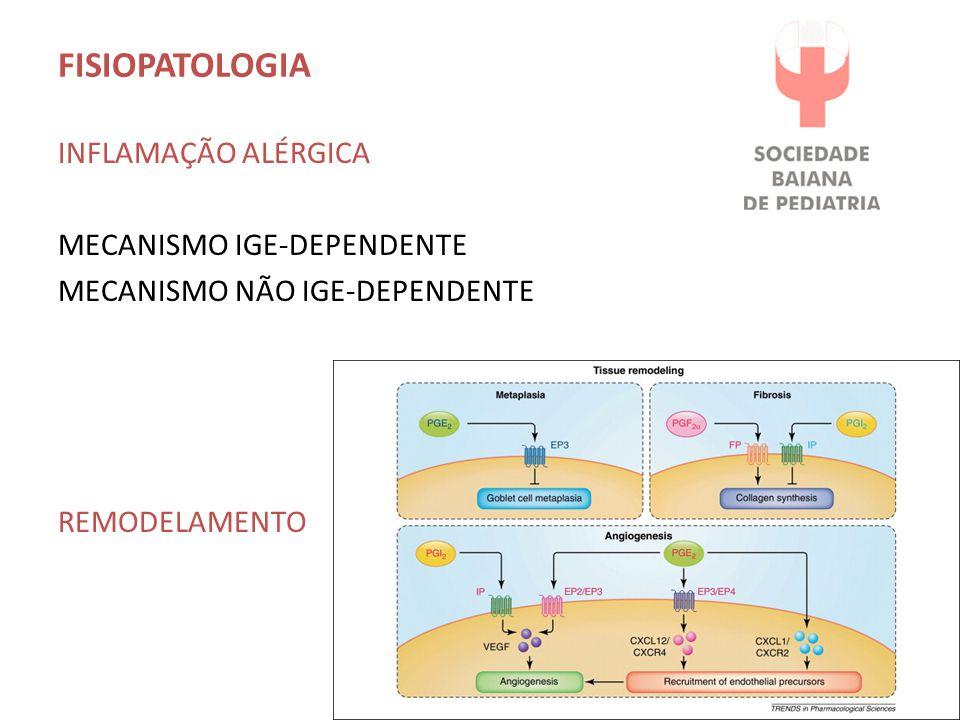 FISIOPATOLOGIA INFLAMAÇÃO ALÉRGICA MECANISMO IGE-DEPENDENTE MECANISMO NÃO IGE-DEPENDENTE REMODELAMENTO