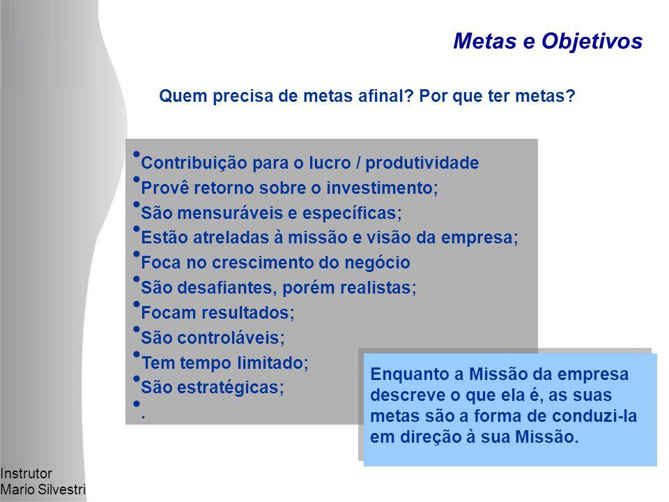 Instrutor Mario Silvestri Metas e Objetivos Quem precisa de metas afinal.