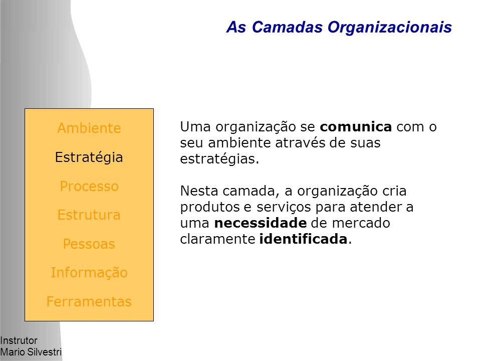 Instrutor Mario Silvestri As Camadas Organizacionais Uma organização se comunica com o seu ambiente através de suas estratégias.