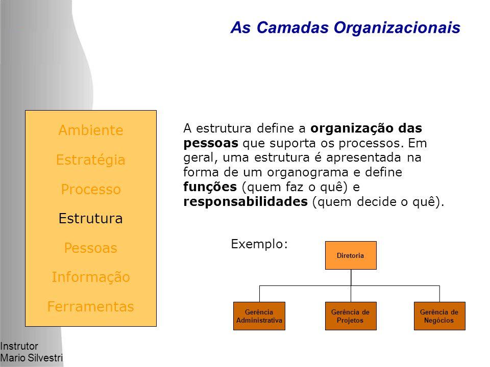 Instrutor Mario Silvestri As Camadas Organizacionais Ambiente Estratégia Processo Estrutura Pessoas Informação Ferramentas A estrutura define a organização das pessoas que suporta os processos.