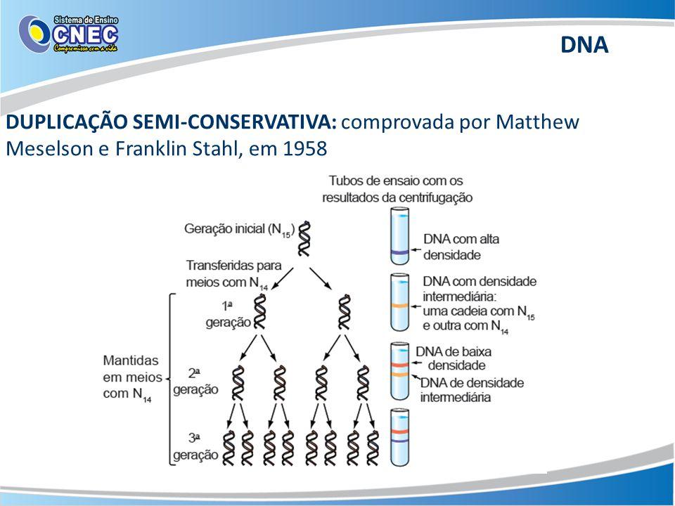 DUPLICAÇÃO SEMI-CONSERVATIVA: comprovada por Matthew Meselson e Franklin Stahl, em 1958 DNA