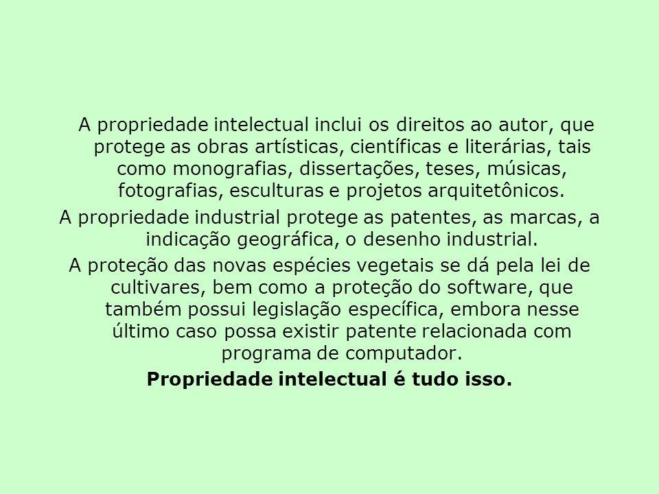 A propriedade intelectual inclui os direitos ao autor, que protege as obras artísticas, científicas e literárias, tais como monografias, dissertações, teses, músicas, fotografias, esculturas e projetos arquitetônicos.