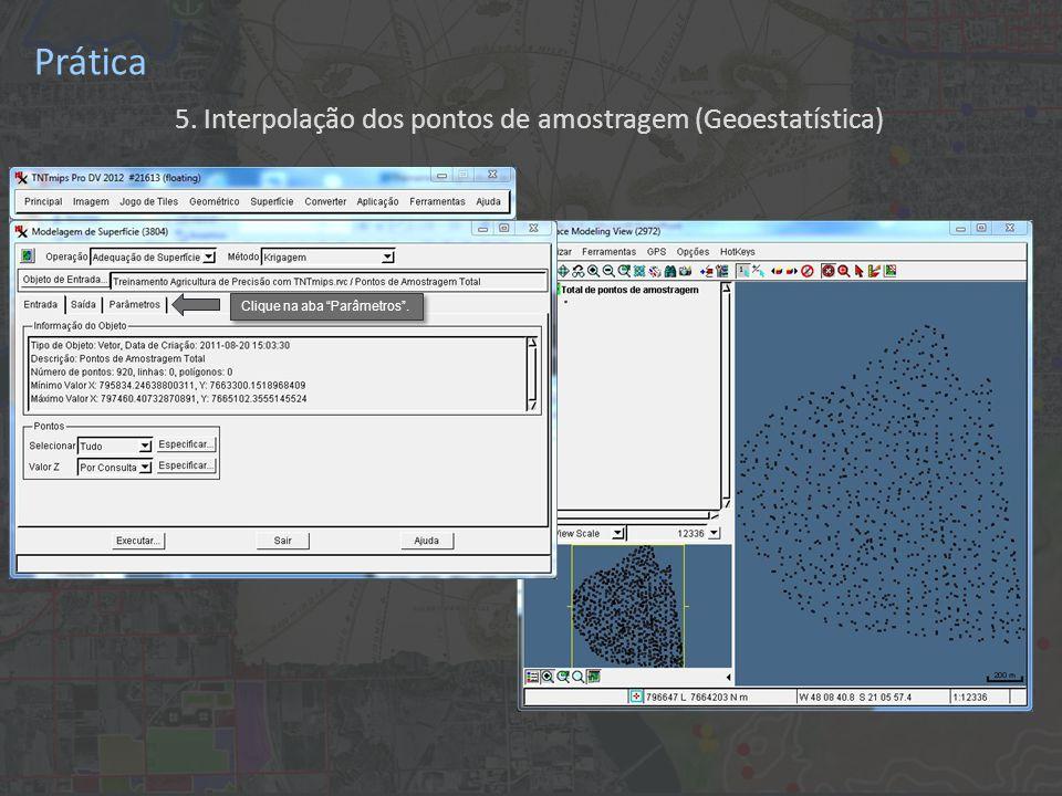 Prática 5. Interpolação dos pontos de amostragem (Geoestatística) Clique na aba Parâmetros .