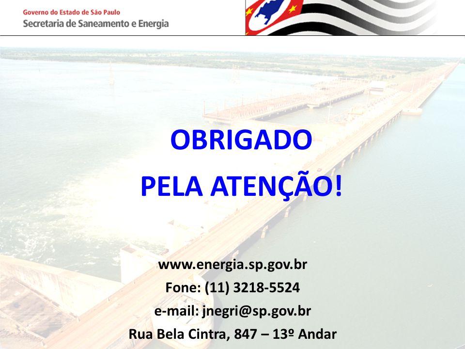 OBRIGADO PELA ATENÇÃO! www.energia.sp.gov.br Fone: (11) 3218-5524 e-mail: jnegri@sp.gov.br Rua Bela Cintra, 847 – 13º Andar
