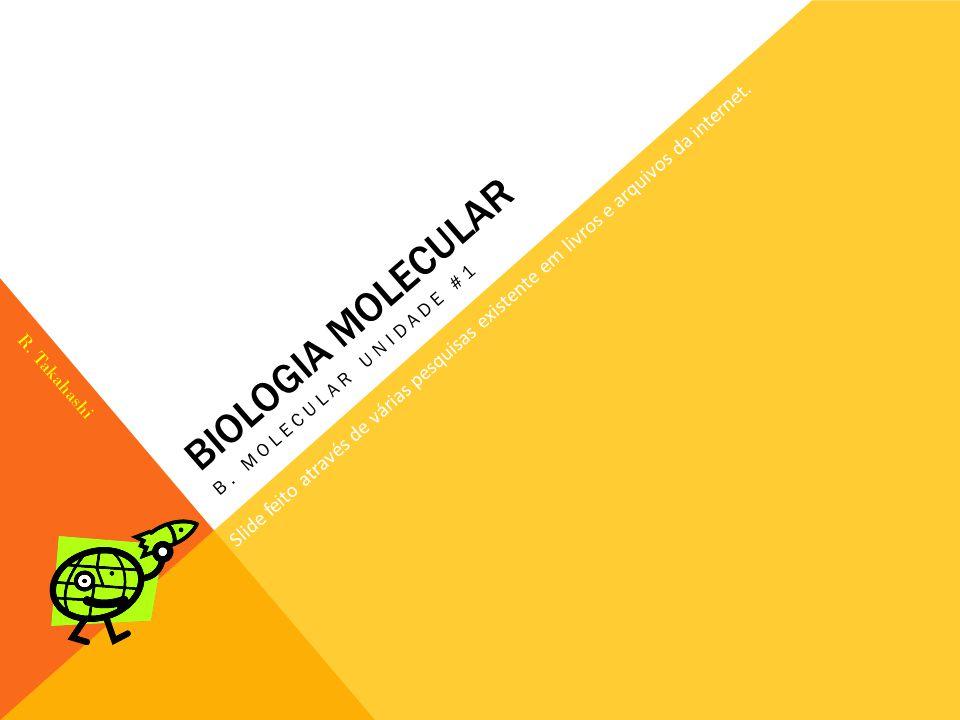 BIOLOGIA MOLECULAR B. MOLECULAR UNIDADE #1 Slide feito através de várias pesquisas existente em livros e arquivos da internet. R. Takahashi