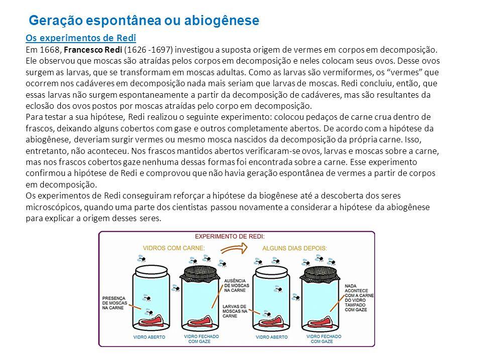 John Needham, em 1745, realizou novos experimentos que vieram a reforçar a hipótese de a vida poder originar-se por abiogênese.