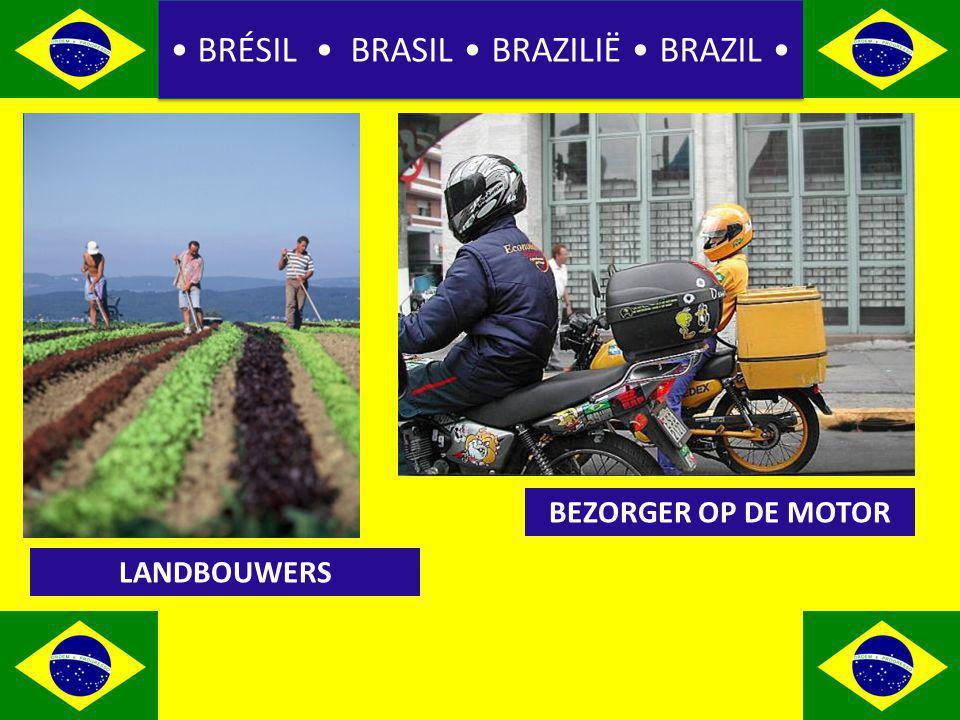 BRÉSIL BRASIL BRAZILIË BRAZIL LANDBOUWERS BEZORGER OP DE MOTOR