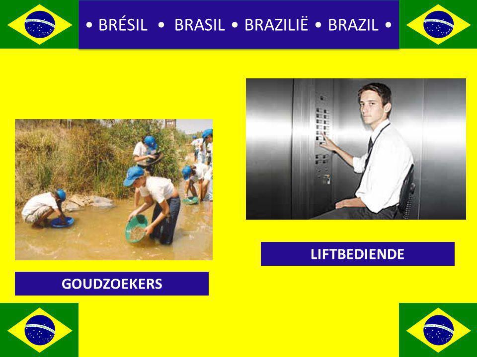 BRÉSIL BRASIL BRAZILIË BRAZIL GOUDZOEKERS LIFTBEDIENDE