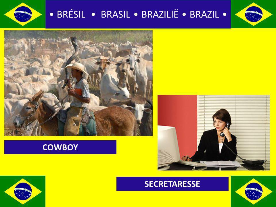 BRÉSIL BRASIL BRAZILIË BRAZIL COWBOY SECRETARESSE
