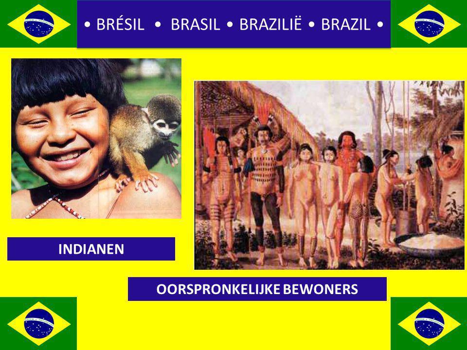 BRÉSIL BRASIL BRAZILIË BRAZIL INDIANEN OORSPRONKELIJKE BEWONERS