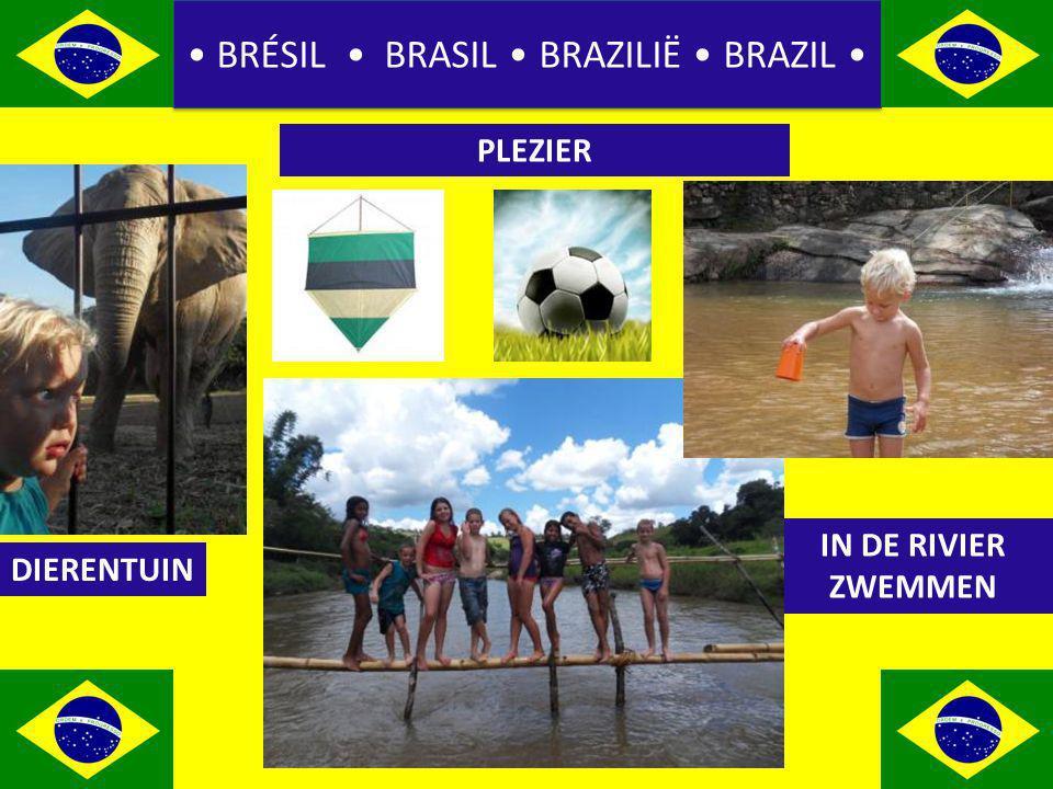 BRÉSIL BRASIL BRAZILIË BRAZIL PLEZIER DIERENTUIN IN DE RIVIER ZWEMMEN