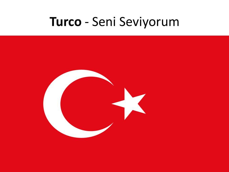 Turco - Seni Seviyorum