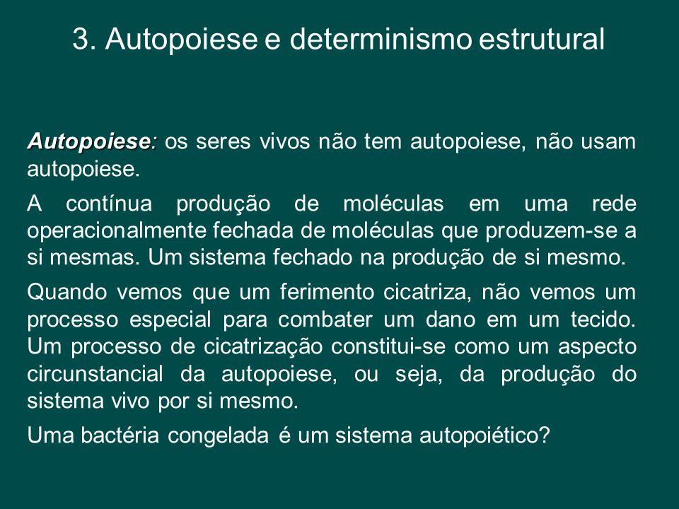 3. Autopoiese e determinismo estrutural Autopoiese: Autopoiese: os seres vivos não tem autopoiese, não usam autopoiese. A contínua produção de molécul