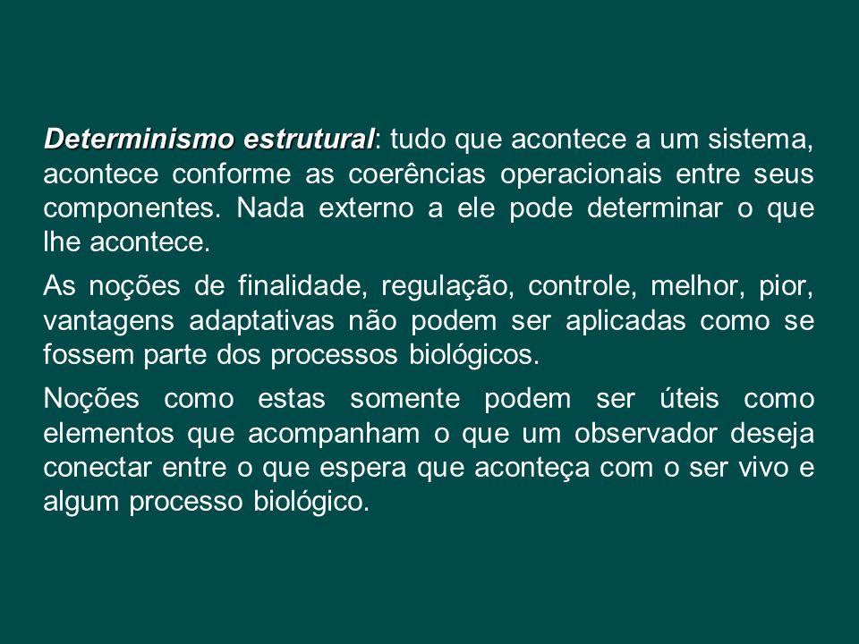 Determinismo estrutural Determinismo estrutural: tudo que acontece a um sistema, acontece conforme as coerências operacionais entre seus componentes.