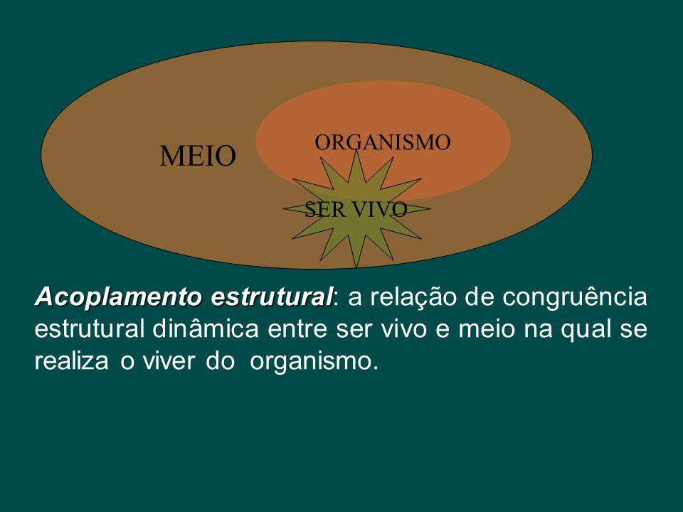 MEIO Acoplamento estrutural Acoplamento estrutural: a relação de congruência estrutural dinâmica entre ser vivo e meio na qual se realiza o viver do o