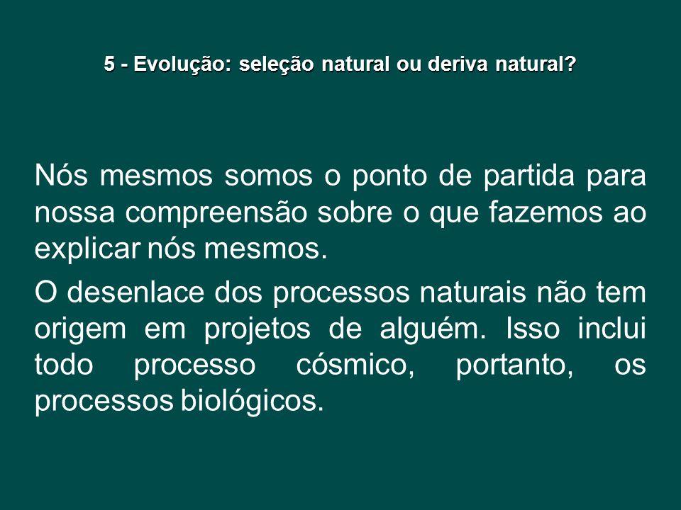 5 - Evolução: seleção natural ou deriva natural? Nós mesmos somos o ponto de partida para nossa compreensão sobre o que fazemos ao explicar nós mesmos