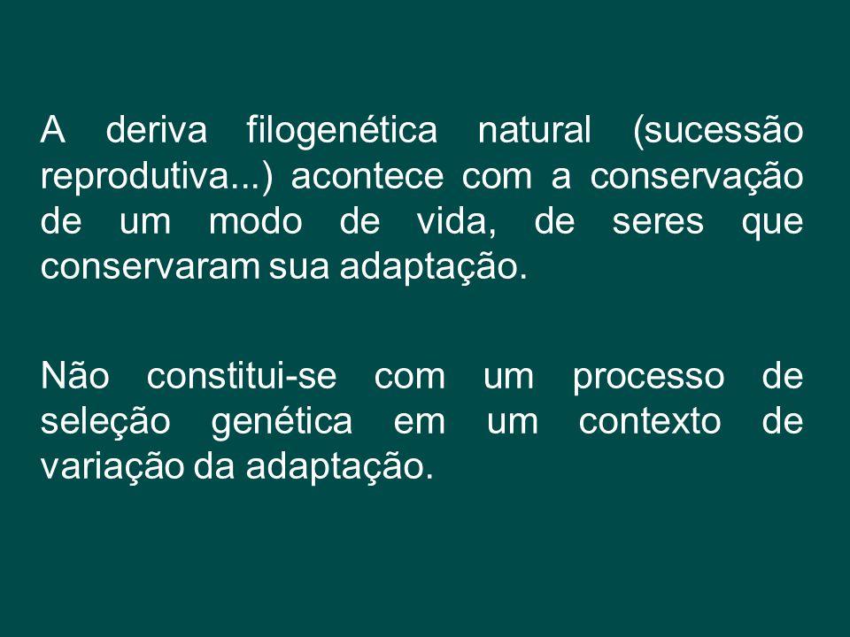 A deriva filogenética natural (sucessão reprodutiva...) acontece com a conservação de um modo de vida, de seres que conservaram sua adaptação. Não con