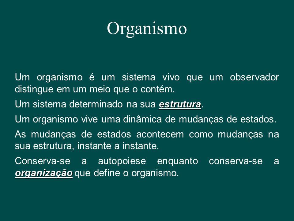 Organismo Um organismo é um sistema vivo que um observador distingue em um meio que o contém. estrutura Um sistema determinado na sua estrutura. Um or