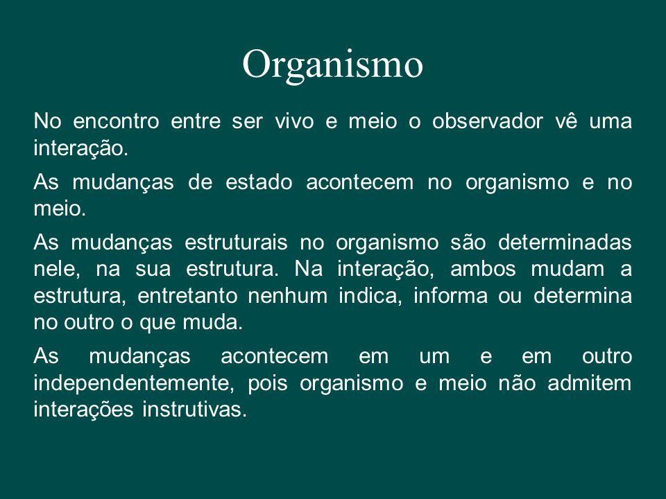Organismo No encontro entre ser vivo e meio o observador vê uma interação. As mudanças de estado acontecem no organismo e no meio. As mudanças estrutu