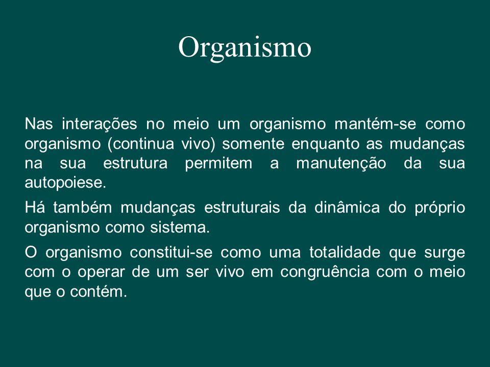 Organismo Nas interações no meio um organismo mantém-se como organismo (continua vivo) somente enquanto as mudanças na sua estrutura permitem a manute