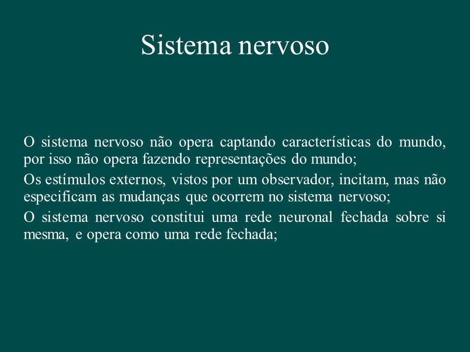 Sistema nervoso O sistema nervoso não opera captando características do mundo, por isso não opera fazendo representações do mundo; Os estímulos extern