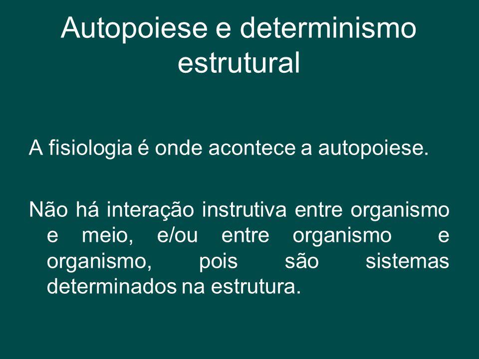 Autopoiese e determinismo estrutural A fisiologia é onde acontece a autopoiese. Não há interação instrutiva entre organismo e meio, e/ou entre organis