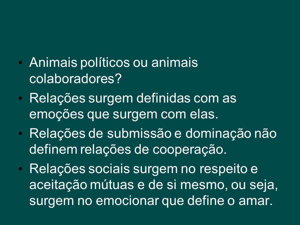• Animais políticos ou animais colaboradores? • Relações surgem definidas com as emoções que surgem com elas. • Relações de submissão e dominação não