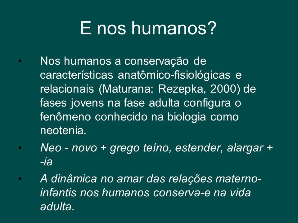E nos humanos? • Nos humanos a conservação de características anatômico-fisiológicas e relacionais (Maturana; Rezepka, 2000) de fases jovens na fase a