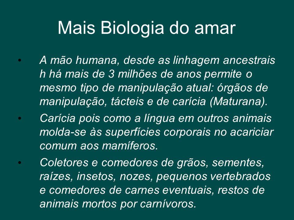Mais Biologia do amar • A mão humana, desde as linhagem ancestrais h há mais de 3 milhões de anos permite o mesmo tipo de manipulação atual: órgãos de