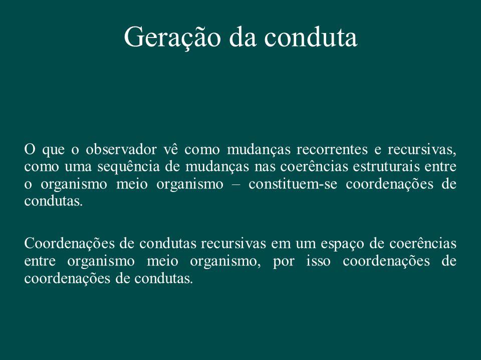Geração da conduta O que o observador vê como mudanças recorrentes e recursivas, como uma sequência de mudanças nas coerências estruturais entre o org