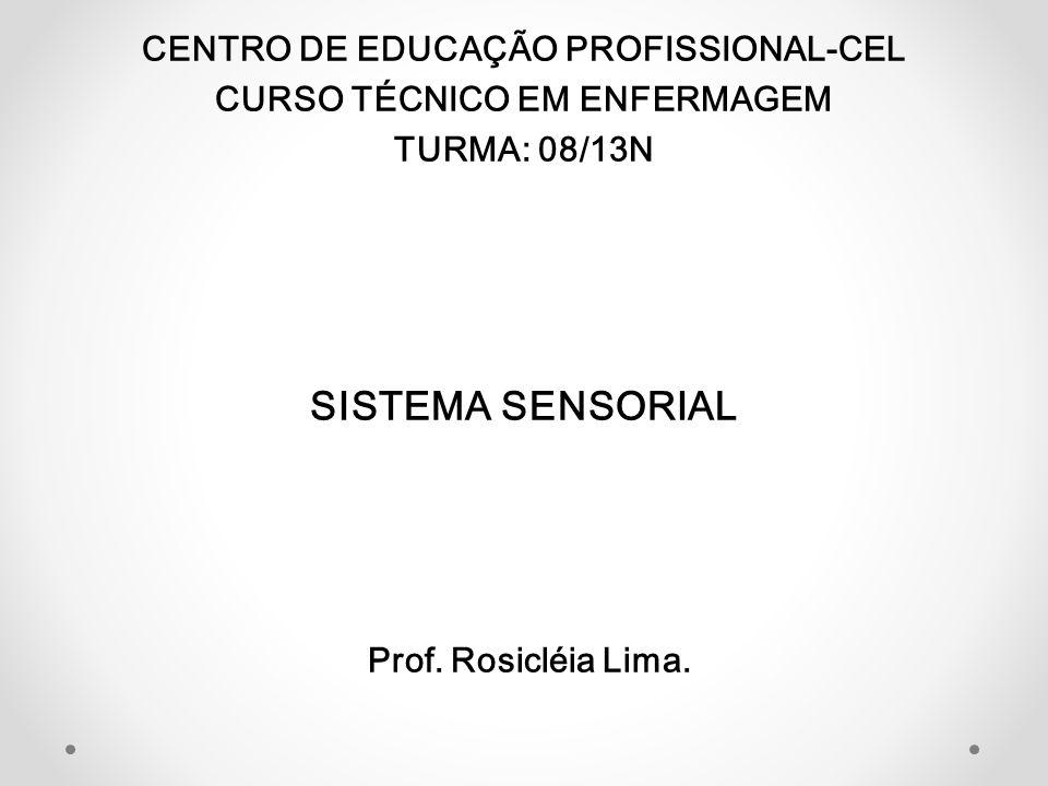 CENTRO DE EDUCAÇÃO PROFISSIONAL-CEL CURSO TÉCNICO EM ENFERMAGEM TURMA: 08/13N SISTEMA SENSORIAL Prof. Rosicléia Lima.