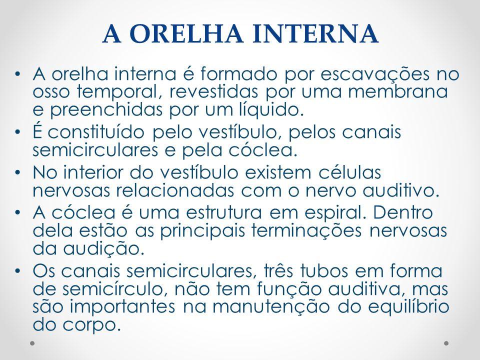 A ORELHA INTERNA • A orelha interna é formado por escavações no osso temporal, revestidas por uma membrana e preenchidas por um líquido. • É constituí