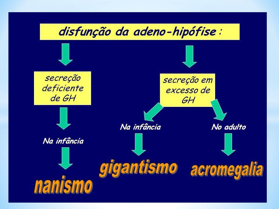 Gigantismo: excesso de GH na infância ALTERAÇÕES DA SECREÇÃO DE GH NA INFÂNCIA.